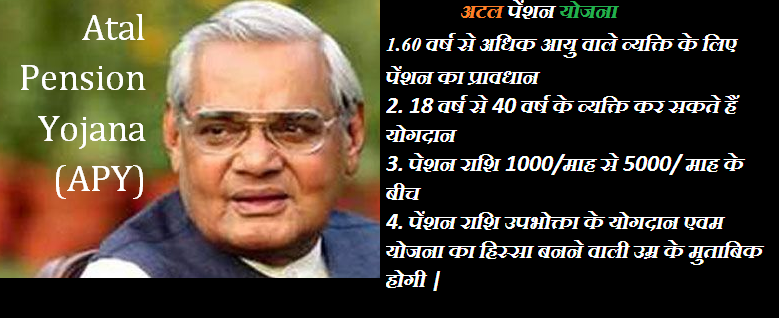 Atal Pension Yojana Government Contribution