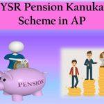 YSR Pension Kanuka Scheme Andhra Pradesh 2019-20