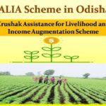 KALIA Scheme Odisha List 2019| @kalia.co.in (Form, District,Block Panchayat list)