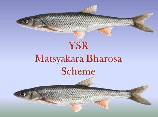 YSR-Matsyakara-Bharosa-Scheme-In-AP