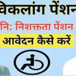 बिहार विकलांग पेंशन योजना 2020 लिस्ट में नाम देखे