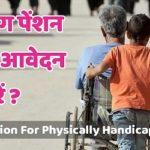 Haryana Viklang (Handicapped) Pension Yojana 2020 Form, Status & Beneficiary List